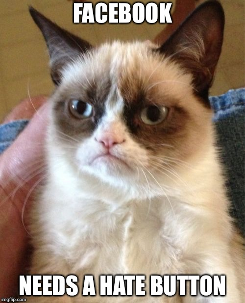 Grumpy Cat Meme | FACEBOOK NEEDS A HATE BUTTON | image tagged in memes,grumpy cat | made w/ Imgflip meme maker