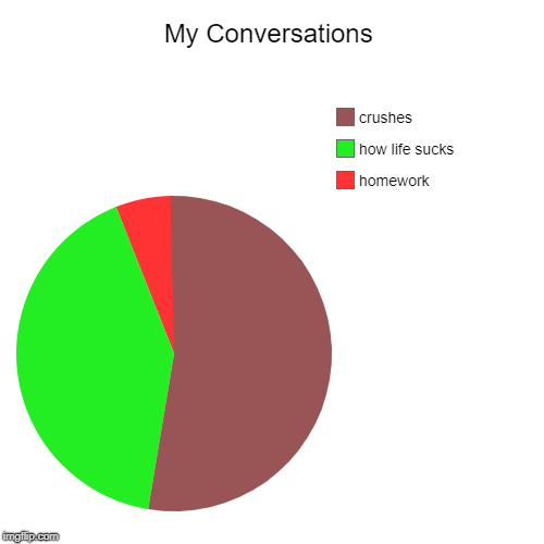 My Conversations | homework, how life sucks, crushes | image tagged in funny,pie charts | made w/ Imgflip chart maker