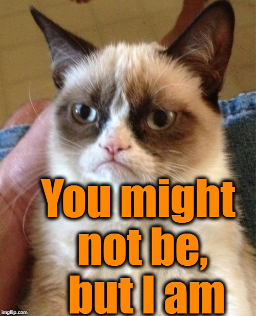 Grumpy Cat Meme | You might not be,  but I am | image tagged in memes,grumpy cat | made w/ Imgflip meme maker