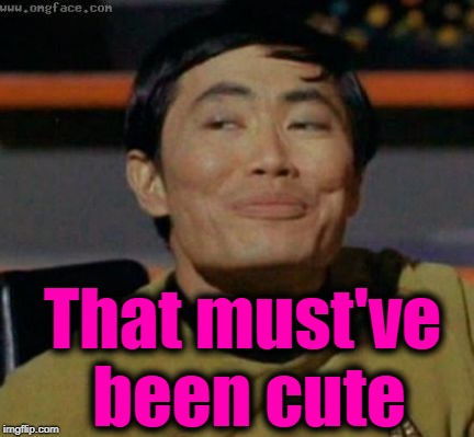 sulu | That must've been cute | image tagged in sulu | made w/ Imgflip meme maker