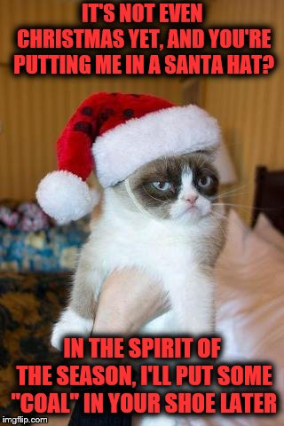 "Too early for me still | IT'S NOT EVEN CHRISTMAS YET, AND YOU'RE PUTTING ME IN A SANTA HAT? IN THE SPIRIT OF THE SEASON, I'LL PUT SOME ""COAL"" IN YOUR SHOE LATER 