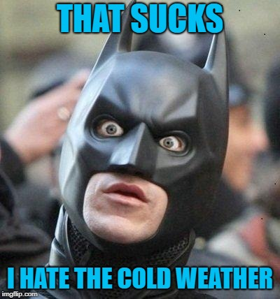 Shocked Batman | THAT SUCKS I HATE THE COLD WEATHER | image tagged in shocked batman | made w/ Imgflip meme maker