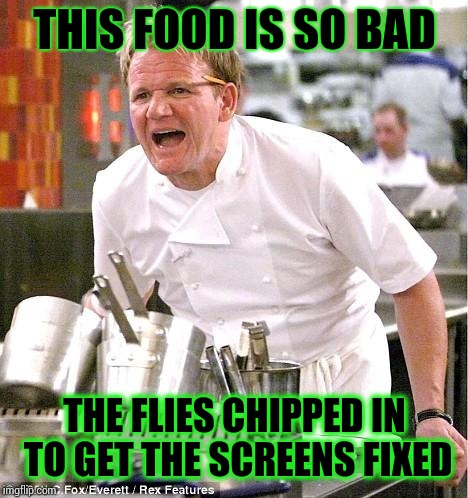 Chef Gordon Ramsay Meme | THIS FOOD IS SO BAD THE FLIES CHIPPED IN TO GET THE SCREENS FIXED | image tagged in memes,chef gordon ramsay | made w/ Imgflip meme maker