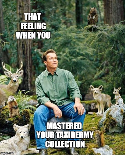 Bring on the PETA comments! | THAT FEELING WHEN YOU MASTERED YOUR TAXIDERMY COLLECTION | image tagged in arnold in forest,animals,arnold schwarzenegger | made w/ Imgflip meme maker