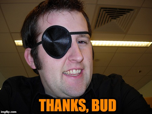guy with eye patch | THANKS, BUD | image tagged in guy with eye patch | made w/ Imgflip meme maker