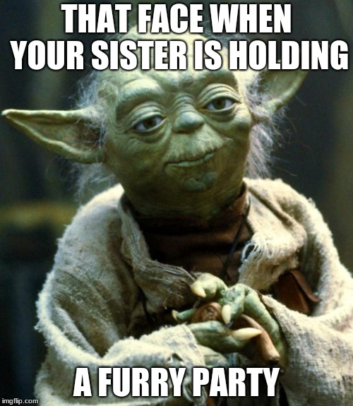 Star Wars Yoda Meme | THAT FACE WHEN YOUR SISTER IS HOLDING A FURRY PARTY | image tagged in memes,star wars yoda | made w/ Imgflip meme maker