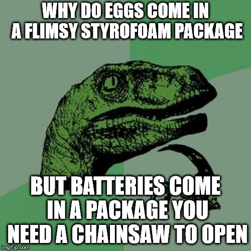 Philosoraptor Meme | WHY DO EGGS COME IN A FLIMSY STYROFOAM PACKAGE BUT BATTERIES COME IN A PACKAGE YOU NEED A CHAINSAW TO OPEN | image tagged in memes,philosoraptor | made w/ Imgflip meme maker