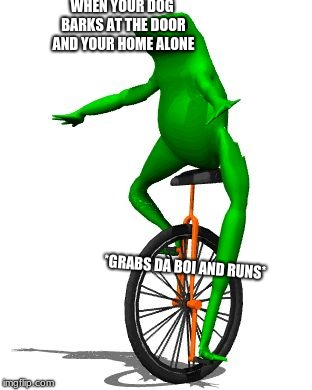 Dat Boi | WHEN YOUR DOG BARKS AT THE DOOR AND YOUR HOME ALONE *GRABS DA BOI AND RUNS* | image tagged in memes,dat boi | made w/ Imgflip meme maker