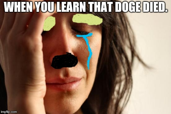 First World Problems Meme | WHEN YOU LEARN THAT DOGE DIED. | image tagged in memes,first world problems | made w/ Imgflip meme maker