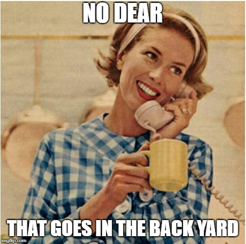 innocent mom | NO DEAR THAT GOES IN THE BACK YARD | image tagged in innocent mom | made w/ Imgflip meme maker