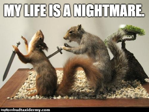taxidermy squirrel backstab | MY LIFE IS A NIGHTMARE. | image tagged in taxidermy squirrel backstab | made w/ Imgflip meme maker