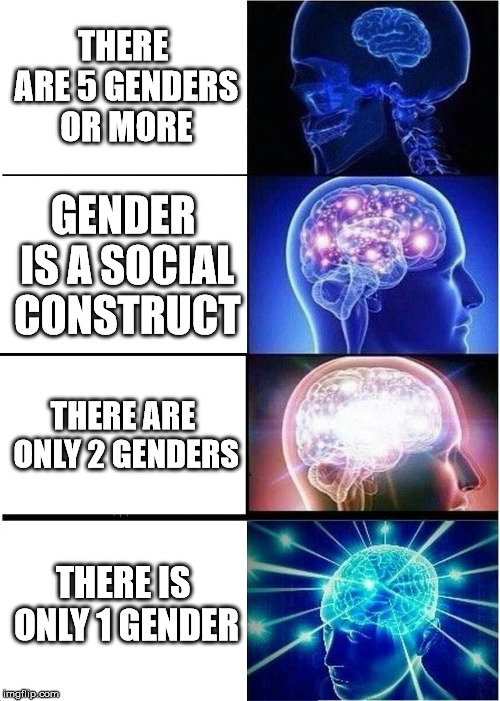 Expanding Brain Meme | THERE ARE 5 GENDERS OR MORE GENDER IS A SOCIAL CONSTRUCT THERE ARE ONLY 2 GENDERS THERE IS ONLY 1 GENDER | image tagged in memes,expanding brain | made w/ Imgflip meme maker