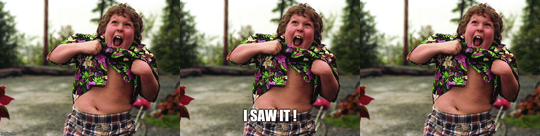 I SAW IT ! | image tagged in truffle shuffle | made w/ Imgflip meme maker