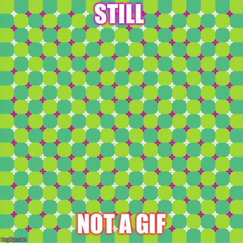 Nothing to see here, keep scrolling... | STILL NOT A GIF | image tagged in optical illusion,memes | made w/ Imgflip meme maker