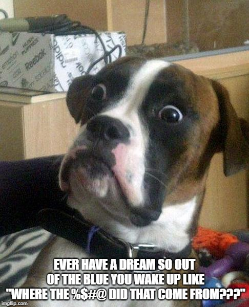 "Maybe it was the Taco Bell I stuffed myself with before hand..... | EVER HAVE A DREAM SO OUT OF THE BLUE YOU WAKE UP LIKE ""WHERE THE %$#@ DID THAT COME FROM???"" 