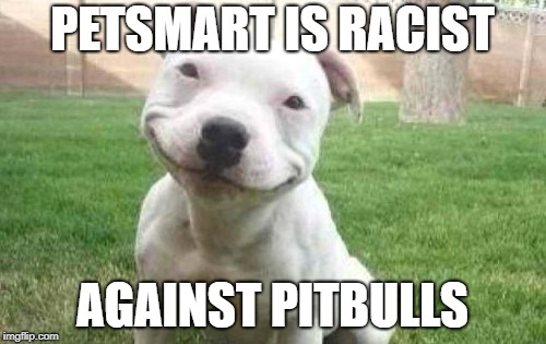 Smiling Pitbull | PETSMART IS RACIST AGAINST PITBULLS | image tagged in smiling pitbull | made w/ Imgflip meme maker