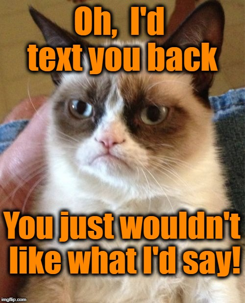 Grumpy Cat Meme | Oh,  I'd text you back You just wouldn't like what I'd say! | image tagged in memes,grumpy cat | made w/ Imgflip meme maker