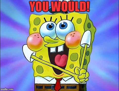 YOU WOULD! | image tagged in spongbob | made w/ Imgflip meme maker