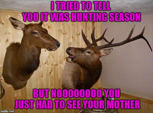 Sometimes it's just better to stay at home!!! | I TRIED TO TELL YOU IT WAS HUNTING SEASON BUT NOOOOOOOO YOU JUST HAD TO SEE YOUR MOTHER | image tagged in deer trophies,memes,deer,funny,hunting,mother in law | made w/ Imgflip meme maker