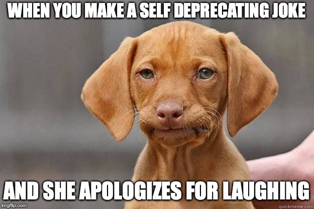 Disapointed Dog | WHEN YOU MAKE A SELF DEPRECATING JOKE AND SHE APOLOGIZES FOR LAUGHING | image tagged in disapointed dog | made w/ Imgflip meme maker
