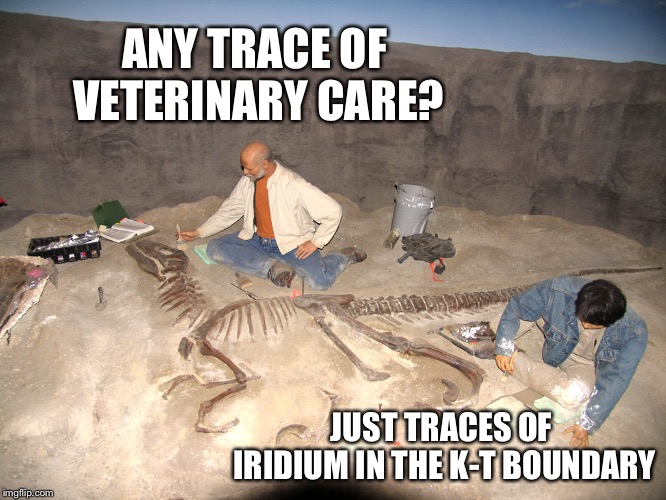Fossilized philosoraptor | ANY TRACE OF VETERINARY CARE? JUST TRACES OF IRIDIUM IN THE K-T BOUNDARY | image tagged in fossilized philosoraptor | made w/ Imgflip meme maker