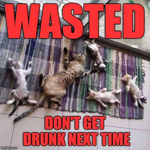 Wasted crew | WASTED DON'T GET DRUNK NEXT TIME | image tagged in wasted crew | made w/ Imgflip meme maker