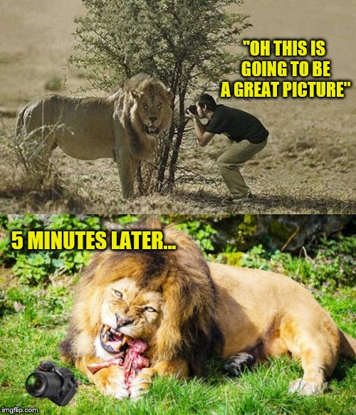 "I done tole you to back up 3 times... | ""OH THIS IS GOING TO BE A GREAT PICTURE"" 5 MINUTES LATER... 