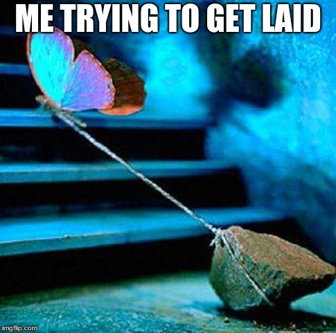 butterfly rock | ME TRYING TO GET LAID | image tagged in butterfly rock | made w/ Imgflip meme maker