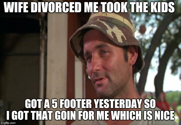 So I Got That Goin For Me Which Is Nice 2 |  WIFE DIVORCED ME TOOK THE KIDS; GOT A 5 FOOTER YESTERDAY SO I GOT THAT GOIN FOR ME WHICH IS NICE | image tagged in memes,so i got that goin for me which is nice 2 | made w/ Imgflip meme maker