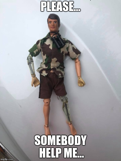I found this guy for sale and it looks like he's some some stuff | PLEASE... SOMEBODY HELP ME... | image tagged in memes | made w/ Imgflip meme maker