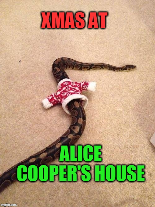 Coop's house | XMAS AT ALICE COOPER'S HOUSE | image tagged in alice cooper,xmas,snakes | made w/ Imgflip meme maker