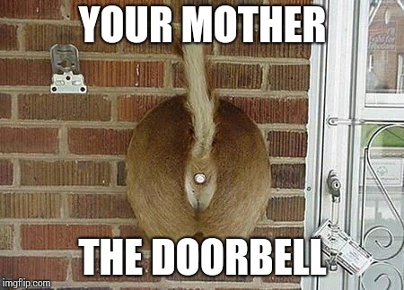 YOUR MOTHER THE DOORBELL | made w/ Imgflip meme maker