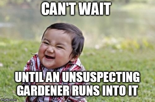 Evil Toddler Meme | CAN'T WAIT UNTIL AN UNSUSPECTING GARDENER RUNS INTO IT | image tagged in memes,evil toddler | made w/ Imgflip meme maker