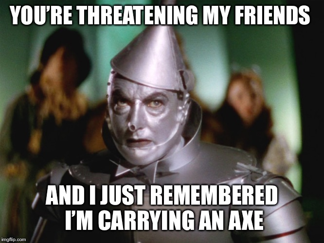 wizard of oz tin man | YOU'RE THREATENING MY FRIENDS AND I JUST REMEMBERED I'M CARRYING AN AXE | image tagged in wizard of oz tin man | made w/ Imgflip meme maker