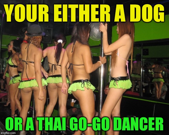 YOUR EITHER A DOG OR A THAI GO-GO DANCER | made w/ Imgflip meme maker