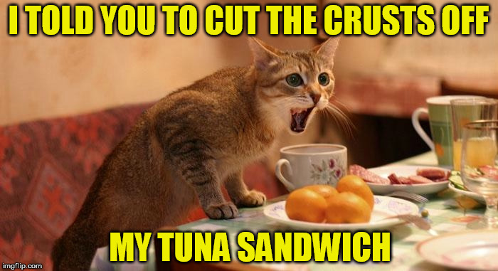 I TOLD YOU TO CUT THE CRUSTS OFF MY TUNA SANDWICH | made w/ Imgflip meme maker