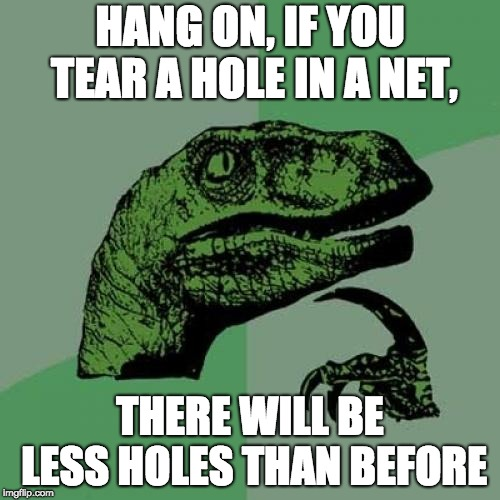 Philosoraptor Meme | HANG ON, IF YOU TEAR A HOLE IN A NET, THERE WILL BE LESS HOLES THAN BEFORE | image tagged in memes,philosoraptor | made w/ Imgflip meme maker