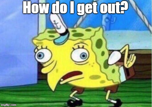 Mocking Spongebob Meme | How do I get out? | image tagged in memes,mocking spongebob | made w/ Imgflip meme maker