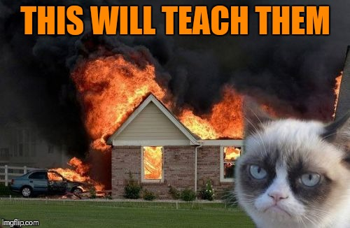 Burn Kitty Meme | THIS WILL TEACH THEM | image tagged in memes,burn kitty,grumpy cat | made w/ Imgflip meme maker