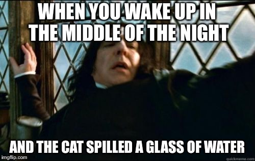 Snape | WHEN YOU WAKE UP IN THE MIDDLE OF THE NIGHT AND THE CAT SPILLED A GLASS OF WATER | image tagged in memes,snape | made w/ Imgflip meme maker