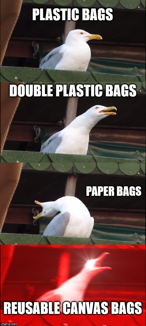 Thug Life in the Grocery Store | PLASTIC BAGS DOUBLE PLASTIC BAGS PAPER BAGS REUSABLE CANVAS BAGS | image tagged in memes,inhaling seagull,grocery store,groceries,shopping,christmas shopping | made w/ Imgflip meme maker