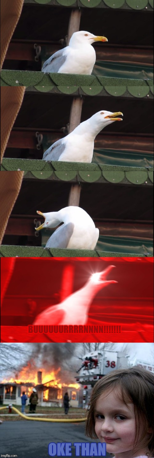 BUUUUUURRRRNNNN!!!!!!! OKE THAN | image tagged in memes,disaster girl,inhaling seagull | made w/ Imgflip meme maker