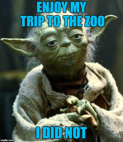 Star Wars Yoda Meme | ENJOY MY TRIP TO THE ZOO I DID NOT | image tagged in memes,star wars yoda | made w/ Imgflip meme maker