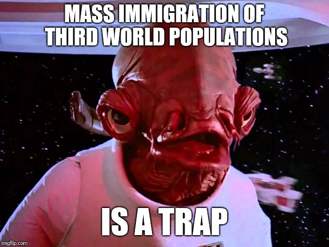 Immigration | MASS IMMIGRATION OF THIRD WORLD POPULATIONS IS A TRAP | image tagged in immigration,third world,donald trump | made w/ Imgflip meme maker