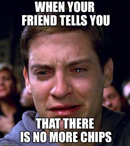 crying peter parker | WHEN YOUR FRIEND TELLS YOU THAT THERE IS NO MORE CHIPS | image tagged in crying peter parker | made w/ Imgflip meme maker