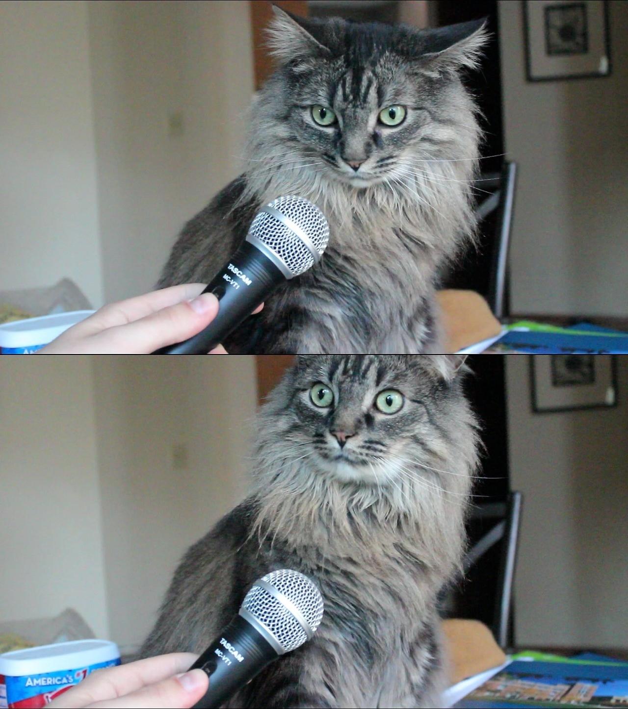 """interview"" Meme Templates - Imgflip"