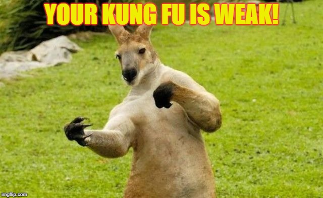 YOUR KUNG FU IS WEAK! | made w/ Imgflip meme maker
