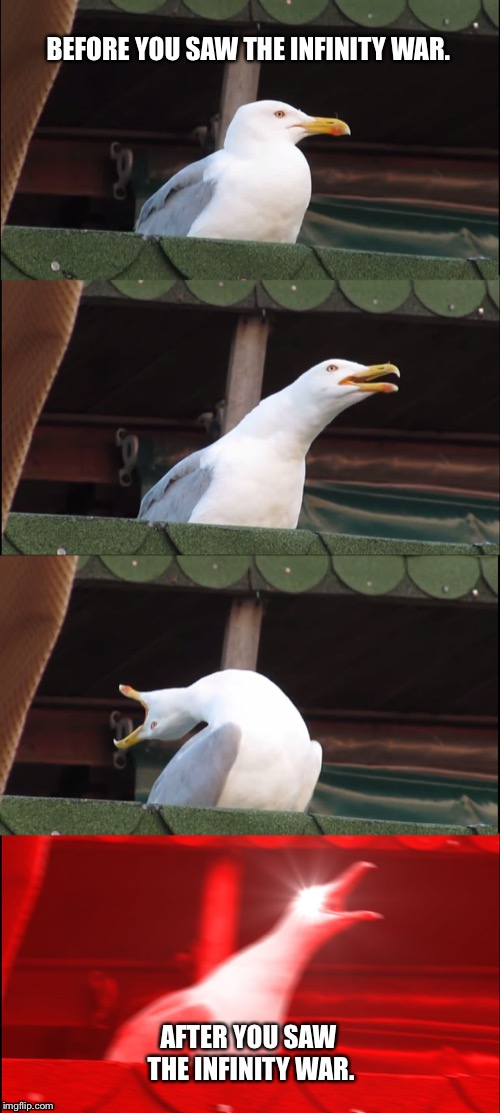 Inhaling Seagull Meme | BEFORE YOU SAW THE INFINITY WAR. AFTER YOU SAW THE INFINITY WAR. | image tagged in memes,inhaling seagull | made w/ Imgflip meme maker