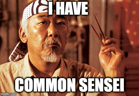 I HAVE COMMON SENSEI | image tagged in wax on wax off | made w/ Imgflip meme maker