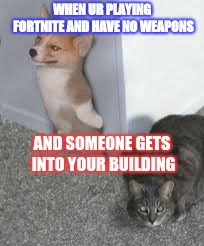 Fortnite | WHEN UR PLAYING FORTNITE AND HAVE NO WEAPONS AND SOMEONE GETS INTO YOUR BUILDING | image tagged in fortnite,funny animals | made w/ Imgflip meme maker